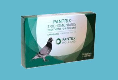 productos pantex europalomas